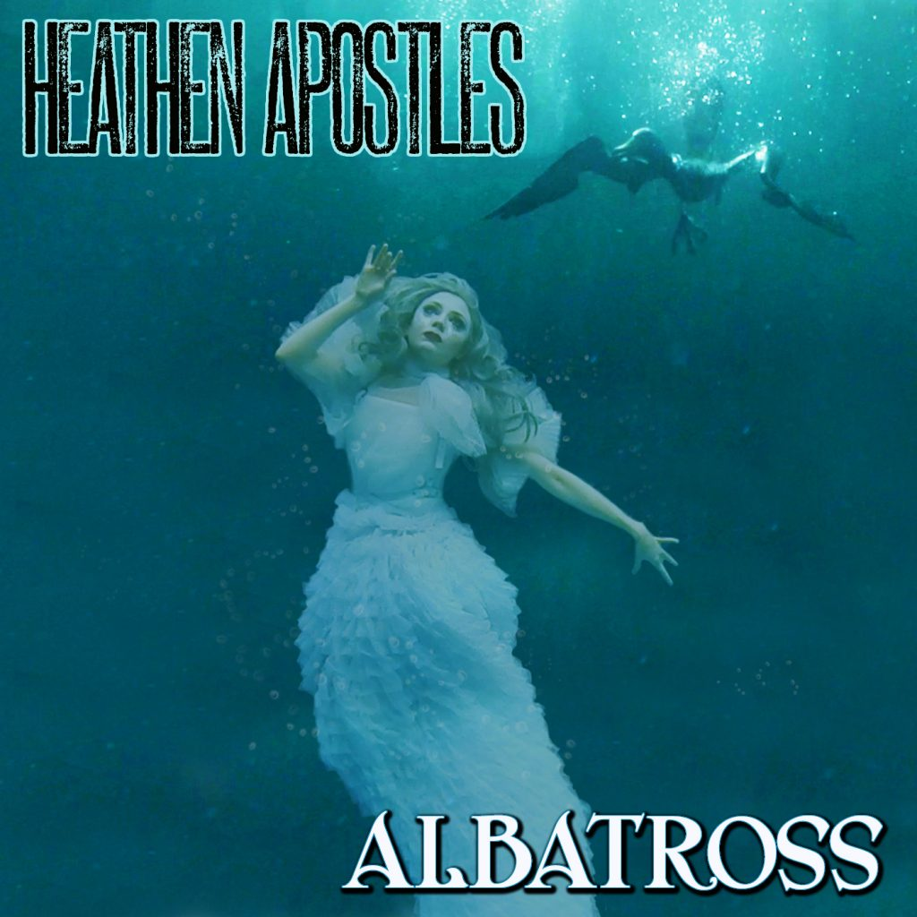 albatross-cover